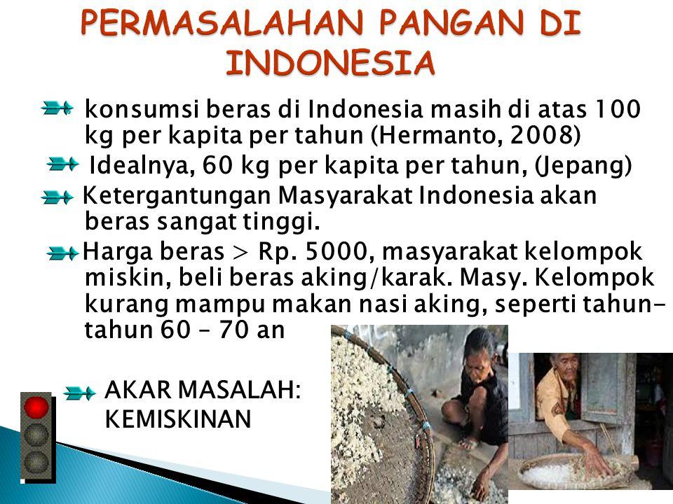 PERMASALAHAN PANGAN DI INDONESIA