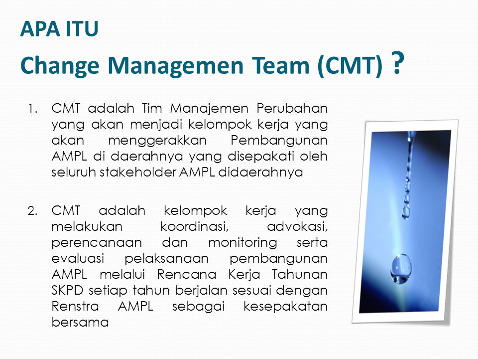 APA ITU Change Managemen Team (CMT)