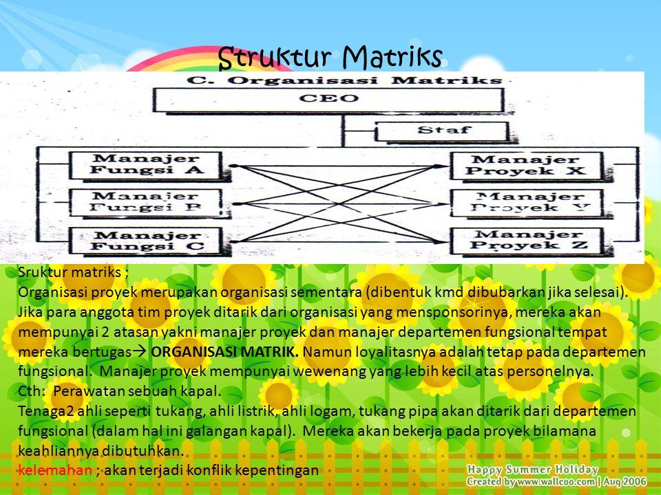 Struktur Matriks Sruktur matriks ;