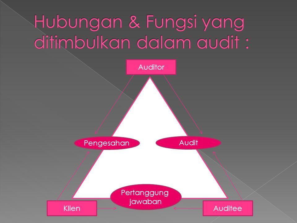 Hubungan & Fungsi yang ditimbulkan dalam audit :