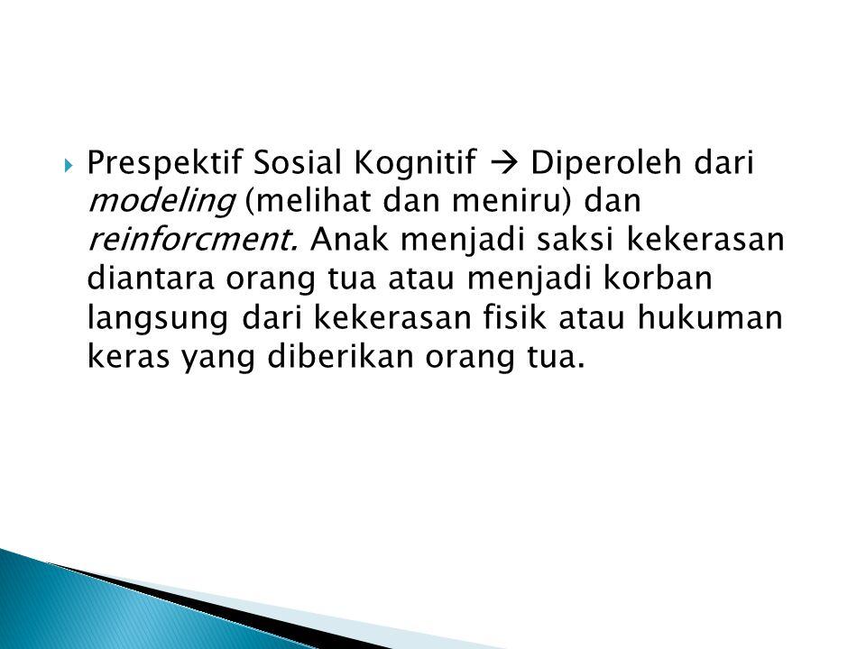 Prespektif Sosial Kognitif  Diperoleh dari modeling (melihat dan meniru) dan reinforcment.