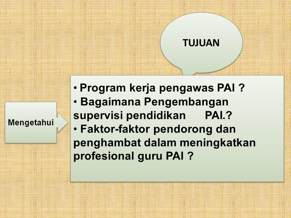 Program kerja pengawas PAI