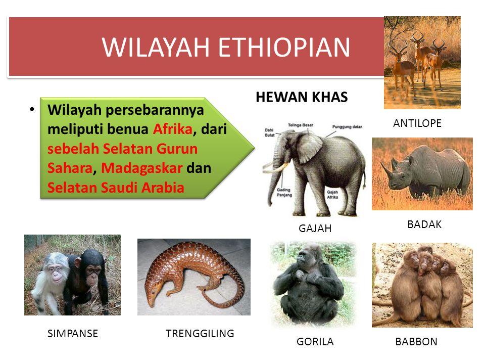 WILAYAH ETHIOPIAN HEWAN KHAS