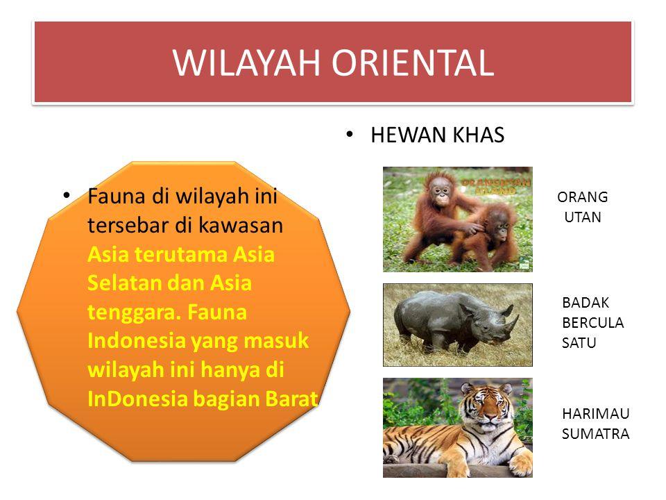 WILAYAH ORIENTAL HEWAN KHAS
