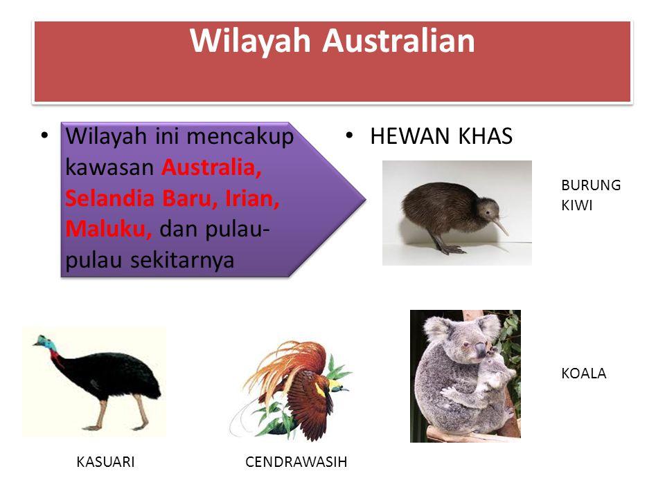 Wilayah Australian Wilayah ini mencakup kawasan Australia, Selandia Baru, Irian, Maluku, dan pulau-pulau sekitarnya.