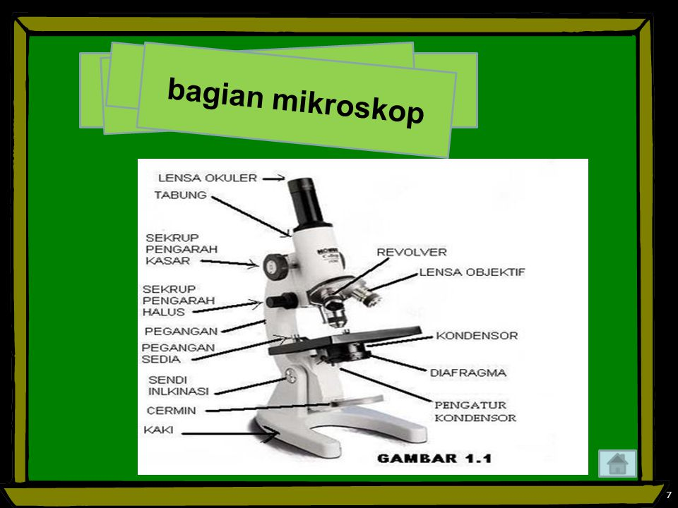 bagian mikroskop