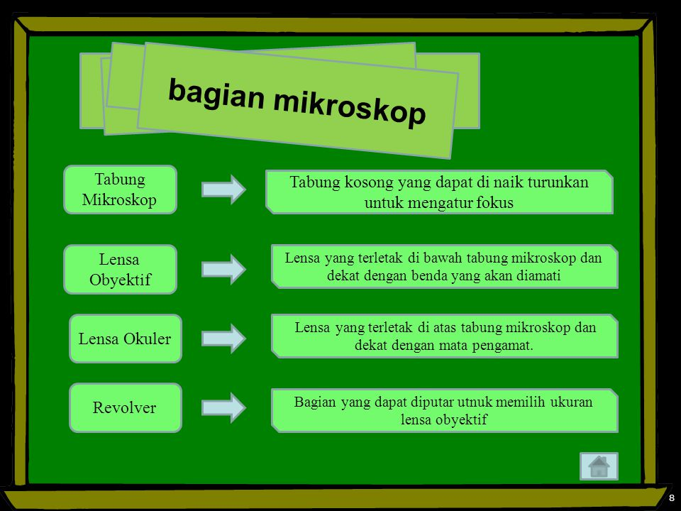 bagian mikroskop Tabung Mikroskop