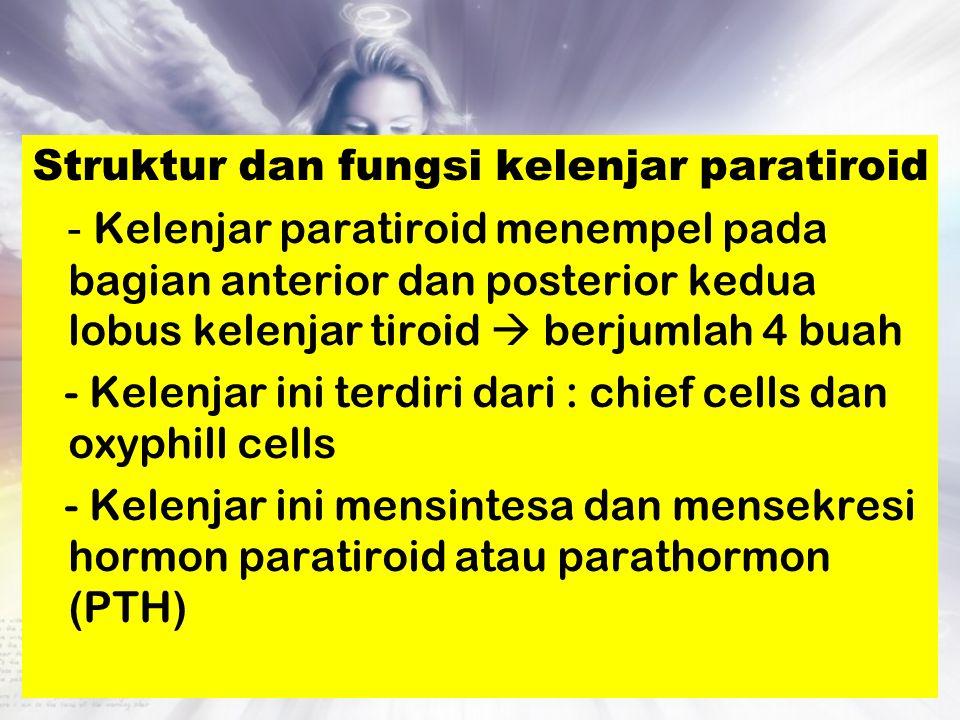 Struktur dan fungsi kelenjar paratiroid