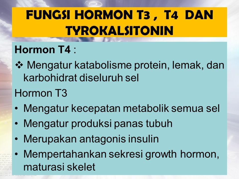FUNGSI HORMON T3 , T4 DAN TYROKALSITONIN