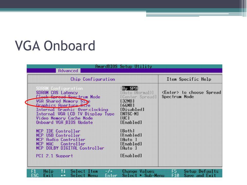 VGA Onboard
