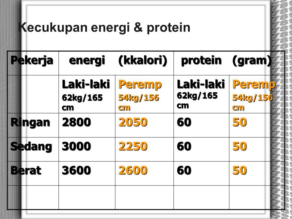 Kecukupan energi & protein