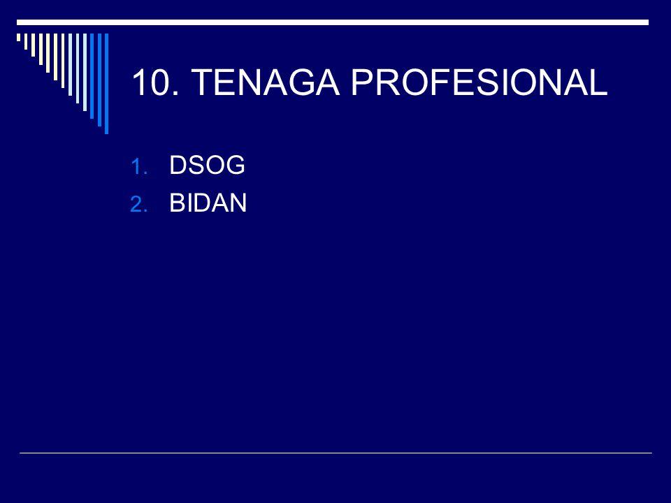 10. TENAGA PROFESIONAL DSOG BIDAN