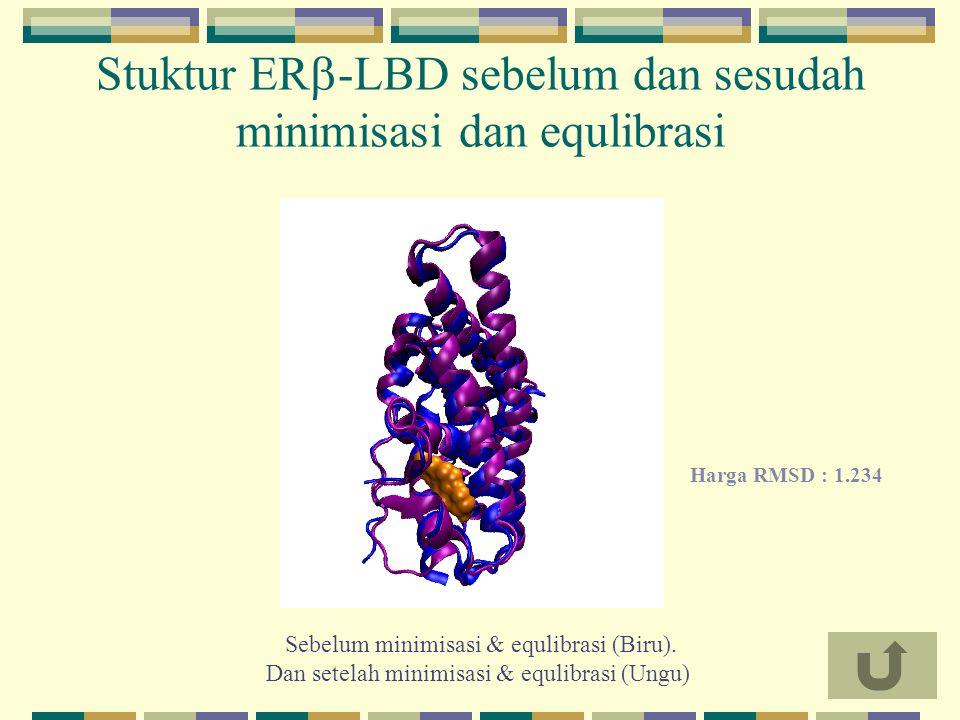 Stuktur ER-LBD sebelum dan sesudah minimisasi dan equlibrasi