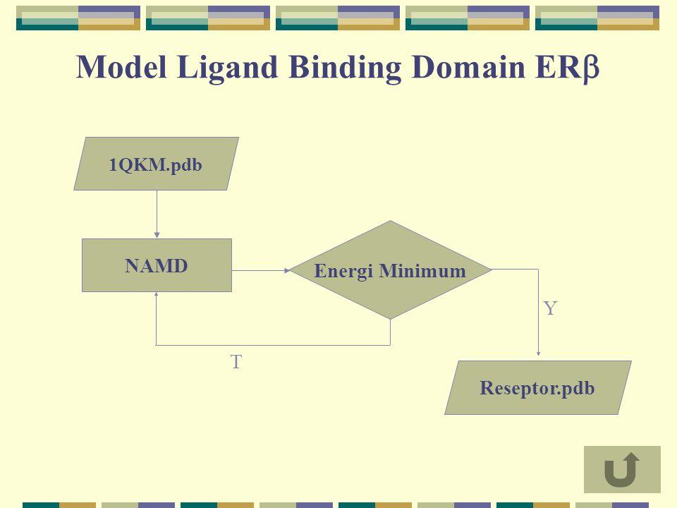 Model Ligand Binding Domain ER