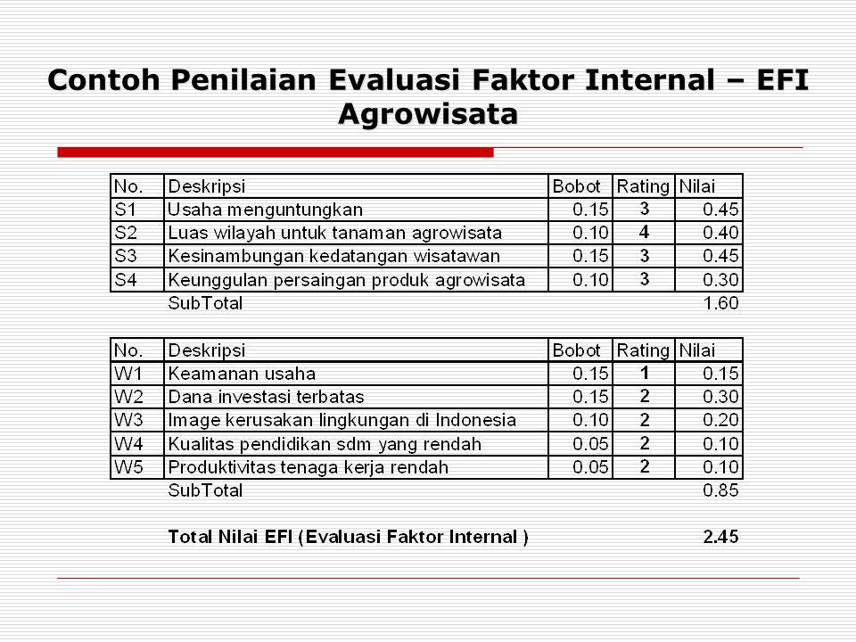 Contoh Penilaian Evaluasi Faktor Internal – EFI