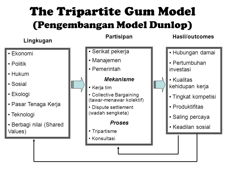 The Tripartite Gum Model (Pengembangan Model Dunlop)