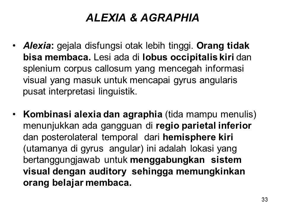 ALEXIA & AGRAPHIA Alexia: gejala disfungsi otak lebih tinggi. Orang tidak. bisa membaca. Lesi ada di lobus occipitalis kiri dan.