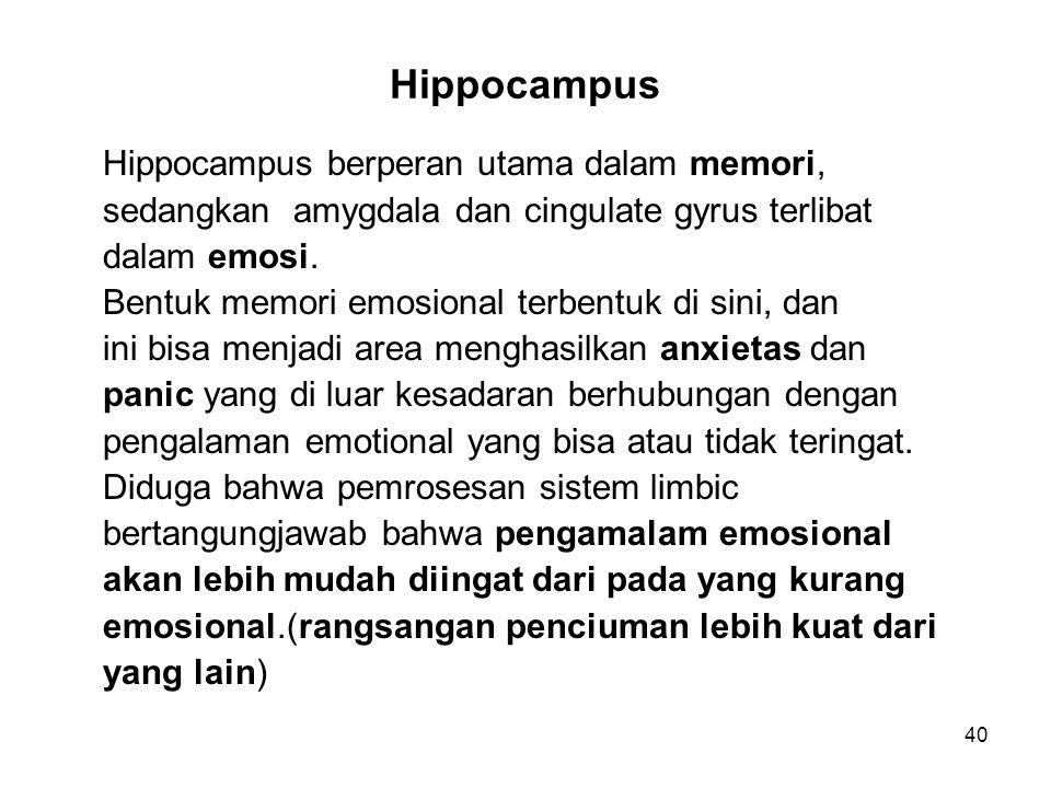 Hippocampus Hippocampus berperan utama dalam memori,