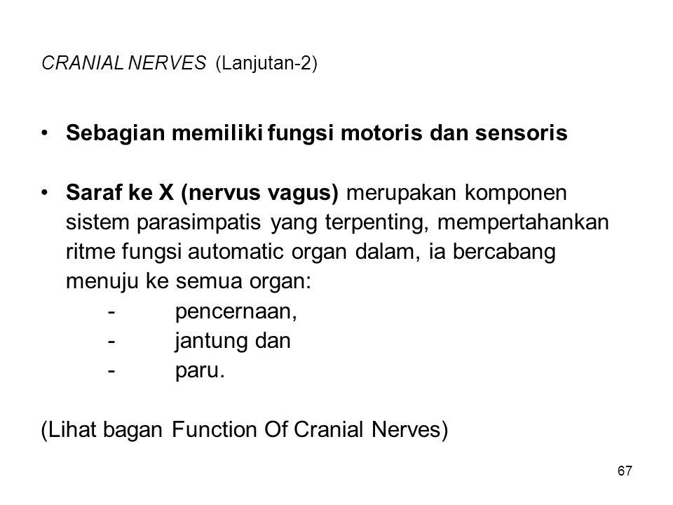 CRANIAL NERVES (Lanjutan-2)