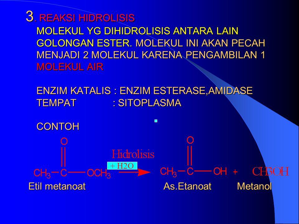 3. REAKSI HIDROLISIS MOLEKUL YG DIHIDROLISIS ANTARA LAIN GOLONGAN ESTER. MOLEKUL INI AKAN PECAH MENJADI 2 MOLEKUL KARENA PENGAMBILAN 1 MOLEKUL AIR ENZIM KATALIS : ENZIM ESTERASE,AMIDASE TEMPAT : SITOPLASMA CONTOH Etil metanoat As.Etanoat Metanol