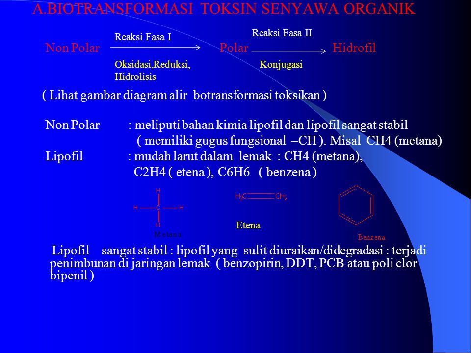 A.BIOTRANSFORMASI TOKSIN SENYAWA ORGANIK