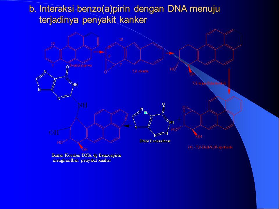 b. Interaksi benzo(a)pirin dengan DNA menuju terjadinya penyakit kanker