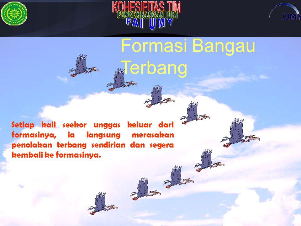Formasi Bangau Terbang
