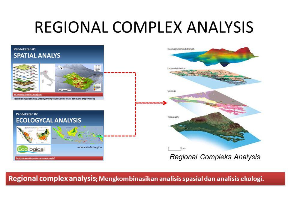 REGIONAL COMPLEX ANALYSIS