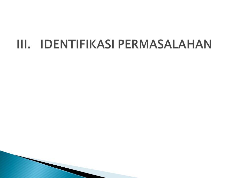 III. IDENTIFIKASI PERMASALAHAN