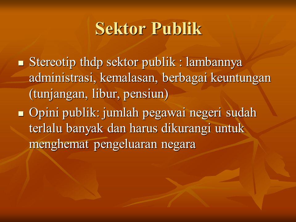 Sektor Publik Stereotip thdp sektor publik : lambannya administrasi, kemalasan, berbagai keuntungan (tunjangan, libur, pensiun)