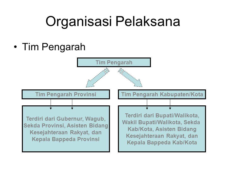 Organisasi Pelaksana Tim Pengarah Tim Pengarah Tim Pengarah Provinsi