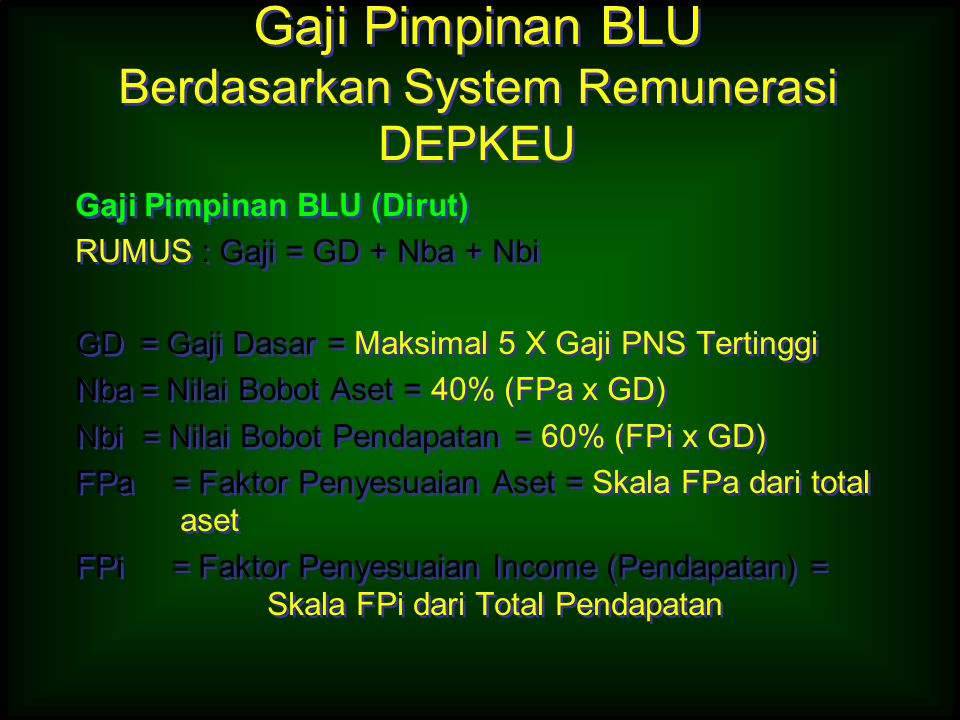 Gaji Pimpinan BLU Berdasarkan System Remunerasi DEPKEU