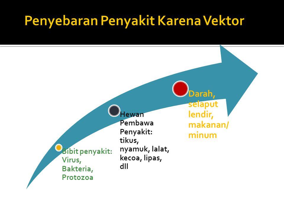 Penyebaran Penyakit Karena Vektor