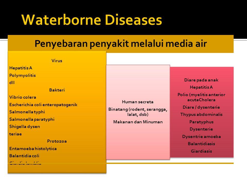 Waterborne Diseases Virus Hepatitis A Polymyolitis dll Bakteri