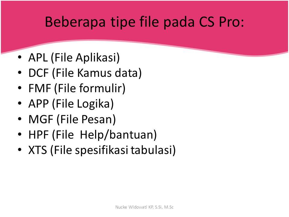 Beberapa tipe file pada CS Pro: