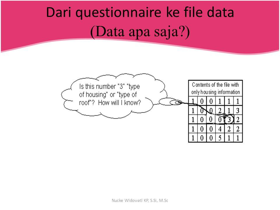 Dari questionnaire ke file data (Data apa saja )