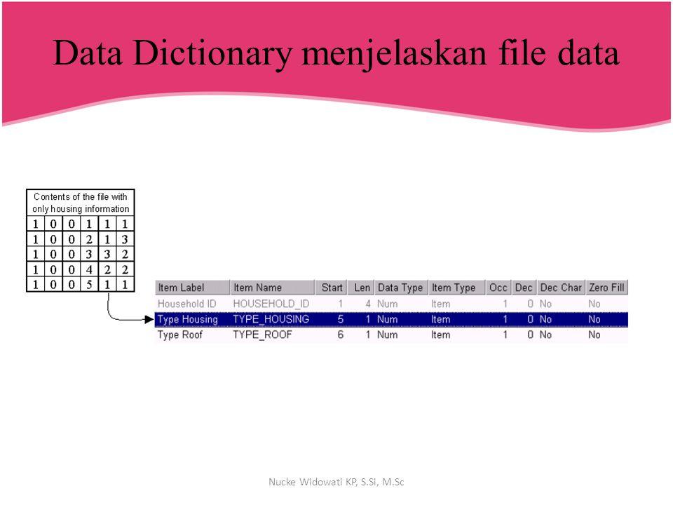 Data Dictionary menjelaskan file data