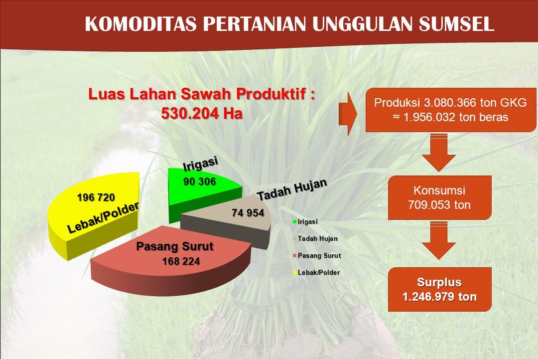 Luas Lahan Sawah Produktif : 530.204 Ha