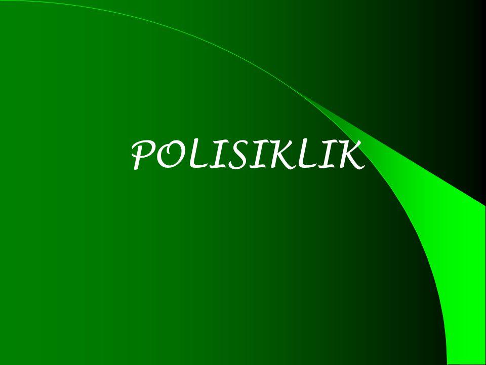 POLISIKLIK