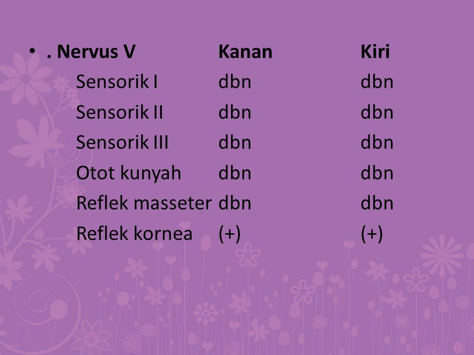 . Nervus V Kanan Kiri Sensorik I dbn dbn. Sensorik II dbn dbn. Sensorik III dbn dbn. Otot kunyah dbn dbn.