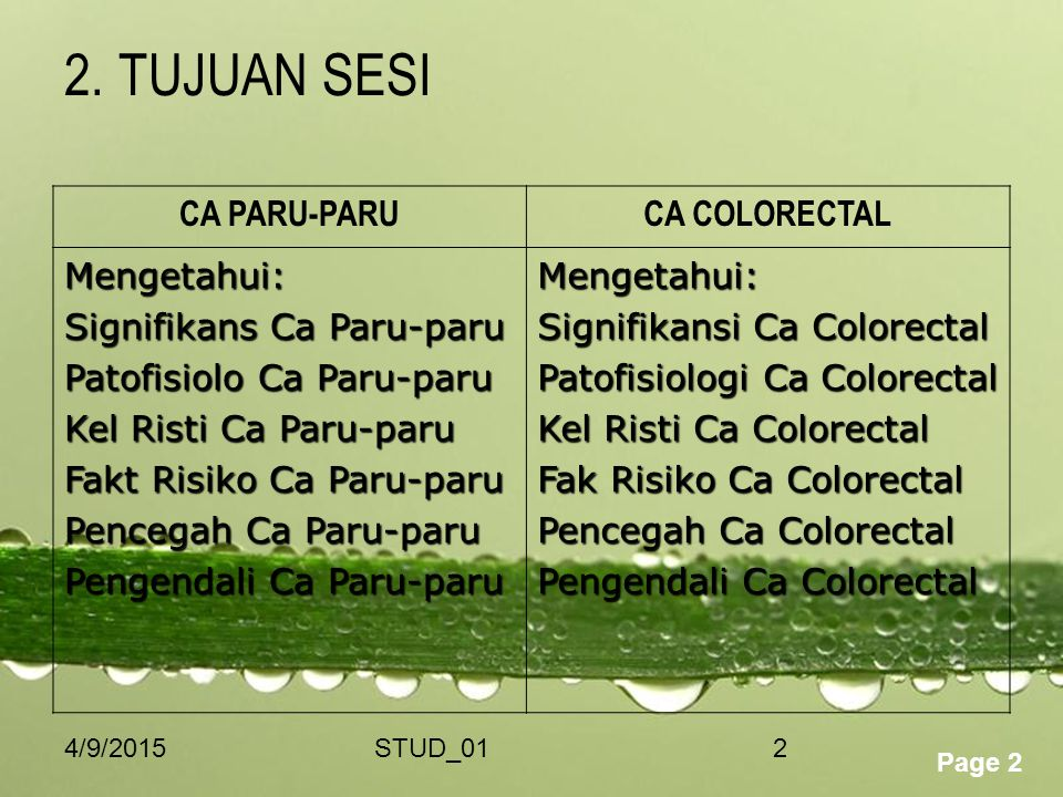 2. TUJUAN SESI CA PARU-PARU CA COLORECTAL Mengetahui:
