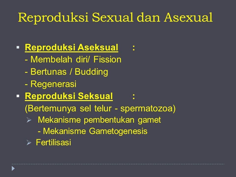 Reproduksi Sexual dan Asexual