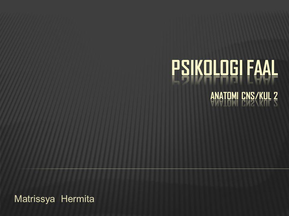 PSIKOLOGI FAAL anatomi CNS/kul 2