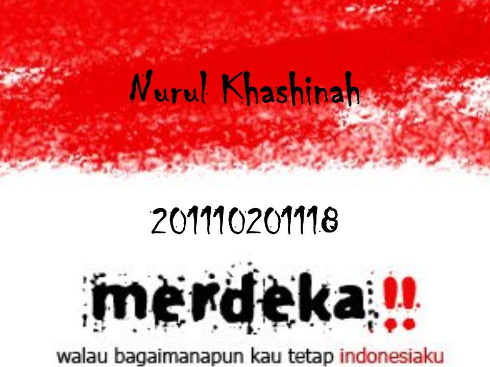 Nurul Khashinah 201110201118