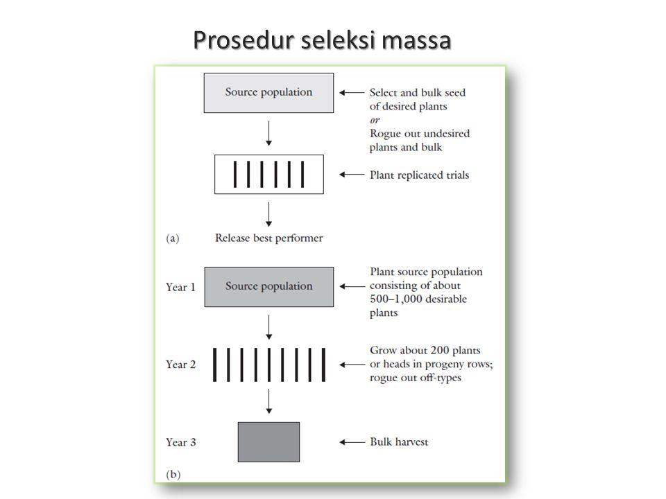 Prosedur seleksi massa