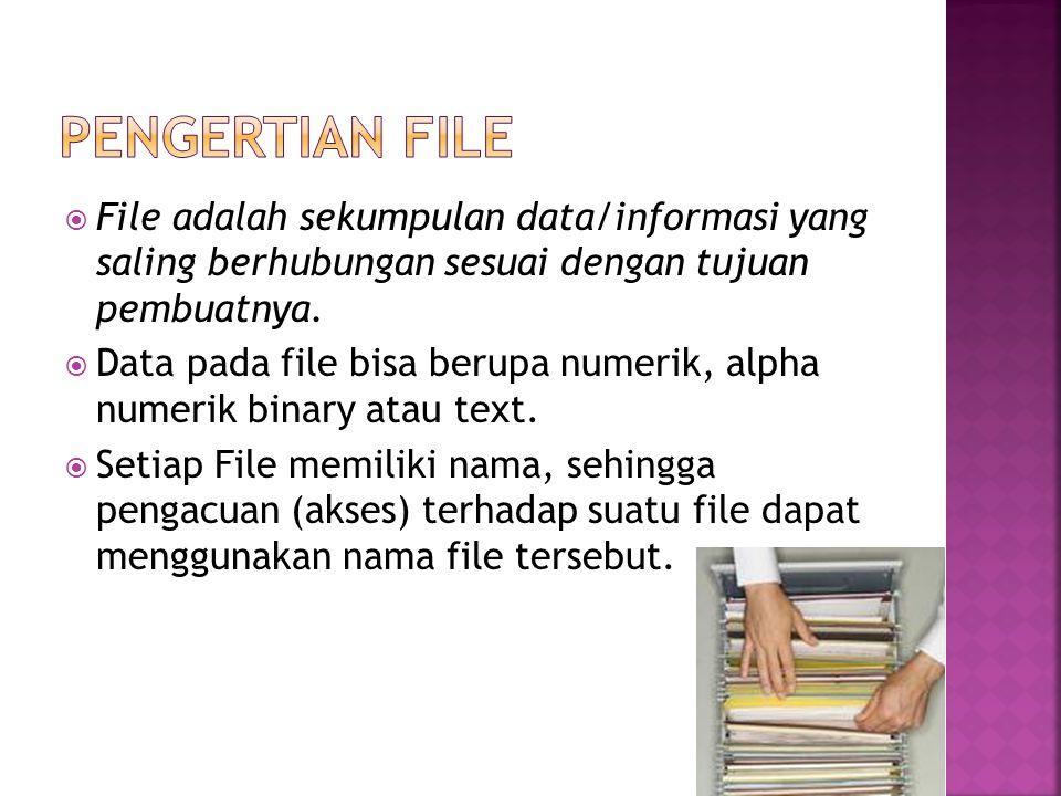 Pengertian File File adalah sekumpulan data/informasi yang saling berhubungan sesuai dengan tujuan pembuatnya.