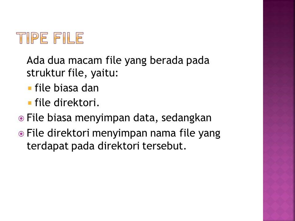 tipe File Ada dua macam file yang berada pada struktur file, yaitu: