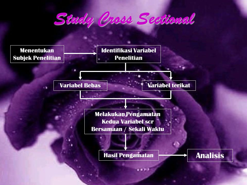 Study Cross Sectional Analisis Menentukan Subjek Penelitian