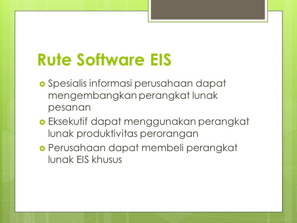 Rute Software EIS Spesialis informasi perusahaan dapat mengembangkan perangkat lunak pesanan.