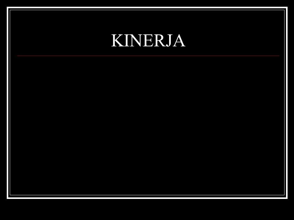 KINERJA